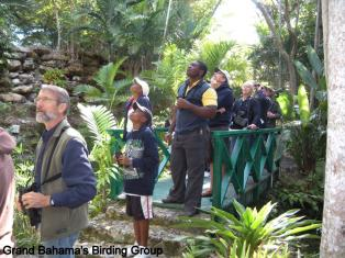 Birding at Garden of the Groves