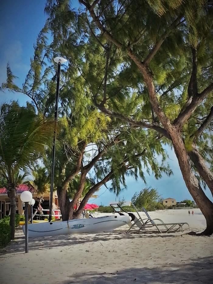 Beach at Bohio Dive Resort