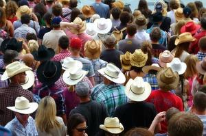 Cowboy hat crowd (Creative Commons shot)