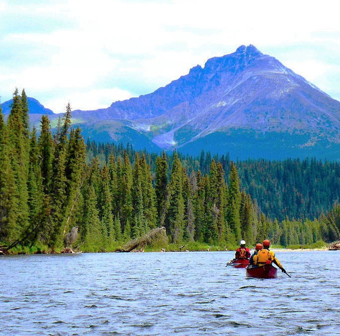 Paddling with ELEMENTS Adventure Company