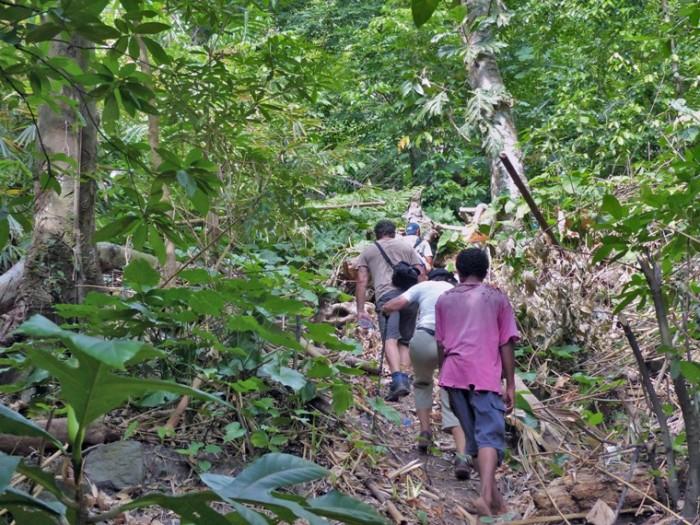 Trail to the ridge -web