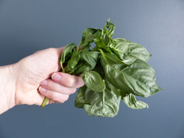 Handful of basil