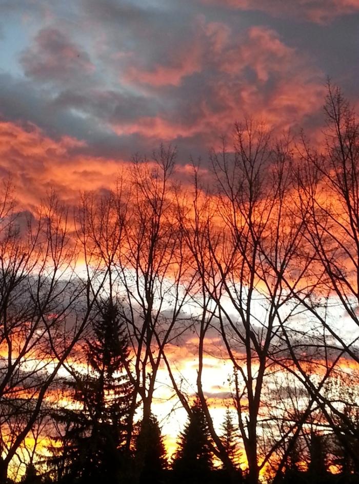November Sunrise - Calgary